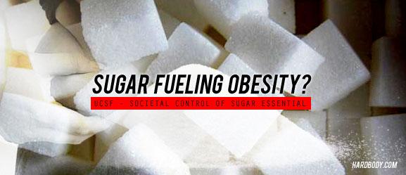 sugar-fuel